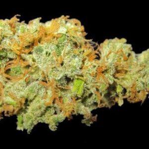 Buy Hawaiian Sativa Weed Strain