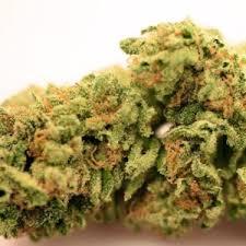 Buy Banana Haze Cannabis Strain