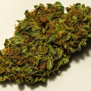 Buy Chronotronic Weed Strain UK