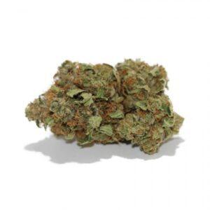 Buy Afghan #1 Medical Marijuana Strain